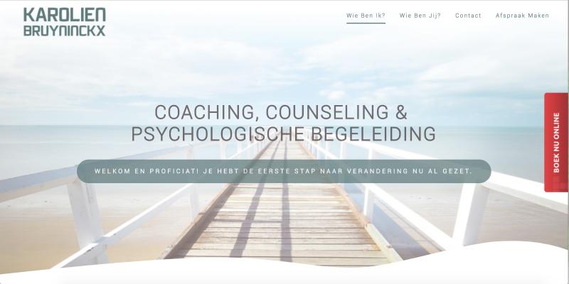 Karolien Bruyninckx - Jan Bruyninckx Logo Digital Analyst Scrum Master Website Developer DPO Politician